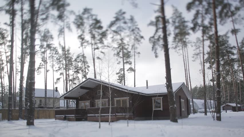 In The Winter Forest. Stock Footage Video 22639750 | Shutterstock