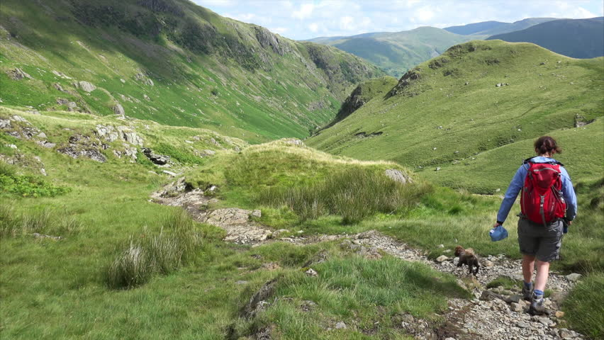 A hiker and their dog descending Hart Crag down Dovedale Beck in the  English Lake District, UK.