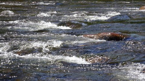 A close up of the River Spey that runs through the Balmoral Castle Estate in the Scottish Highlands. UK.