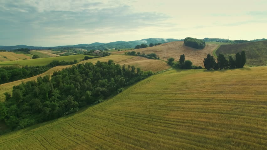 Aerial Shot of Impressive Large Scale Agricultural Fields in Southern Europe #17782444