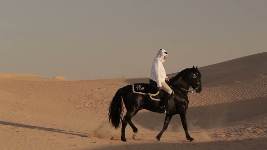 Arabian Horse Rider Riding On Desert In Dubai Stock ...