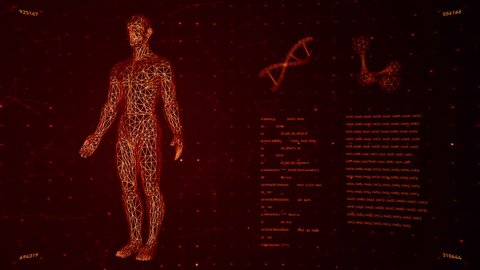 Background with animation of abstract interface. Human body, head, hands, DNA spirals and models of atom in wireframe style and animation programming codes. Animation of seamless loop.