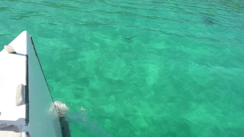 sailing in jamaica