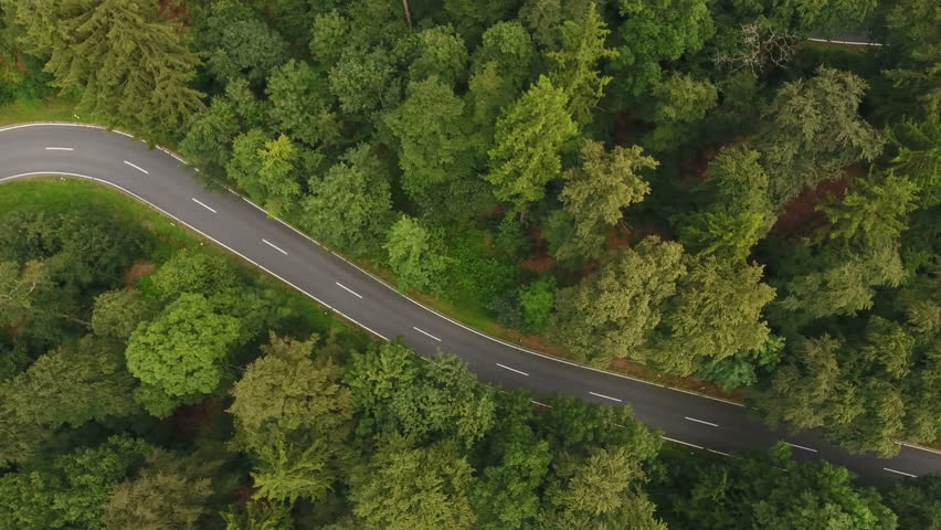 Road through forest - aerial view