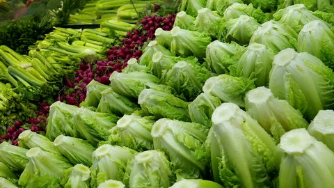 Woman selecting green lettuce in grocery store produce department with 4k resolution