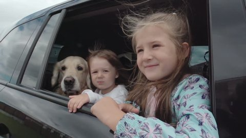 Two little sisters sitting with dog in the moving car and looking in the window