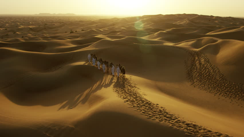 Aerial drone of camels being led by handlers across desert sand dunes | Shutterstock HD Video #18614474
