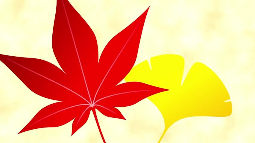 Maple ginkgo opening frame 2 pattern bright background | Shutterstock HD Video #18666254