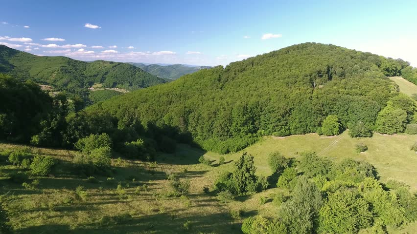 Aerial view of forest, grassland and houses, summer day. | Shutterstock HD Video #18675734
