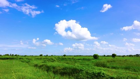Green field and blue sky with cloud time laps