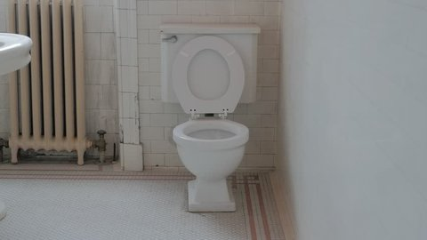 Interior bathroom shot of Victorian gothic revival style toilet
