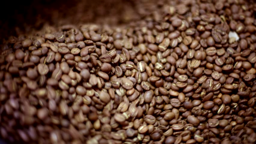 marketability ampalaya seed coffee Make ampalaya seed coffee and polvoron — foodrecap apr 5, 2010 nov 17, 2012 dry the seeds with a dry cloth or ampalaya seeds as coffee research paper a tissue paper statement of the problem dry the seeds with a dry cloth or with a tissue paper ielts writing task 2 thesis statement report on customer preference the research.
