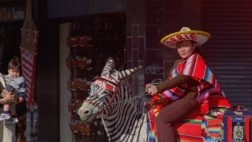 day Close young girl sombrero zebra donkey painted zebra stripes Souvenir  Picture stand fc295168243