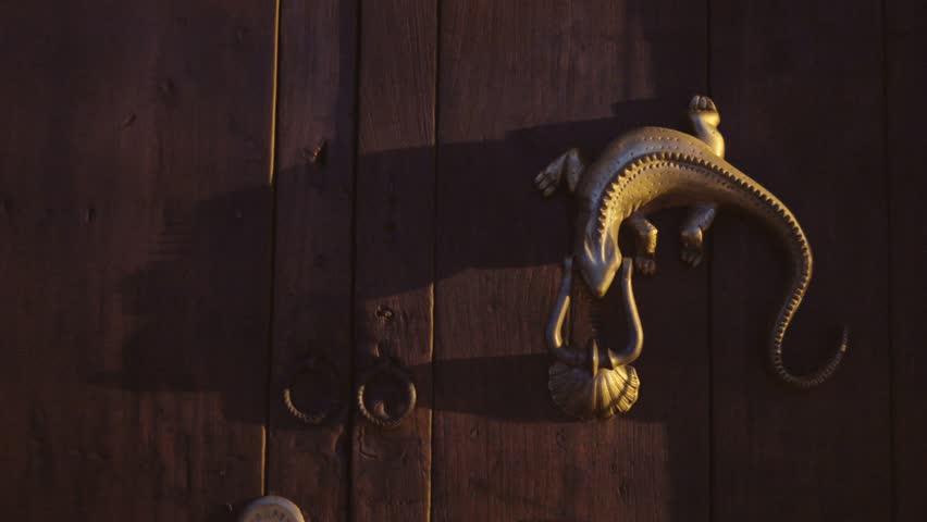 Lizards On Wooden Door Stock Footage Video 13026842 | Shutterstock