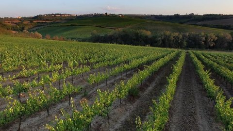 4k aerial drone  footage of vineyards in Tuscany Italy Chianti