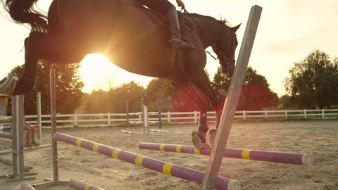 SLOW MOTION, CLOSE UP: Female rider practicing showjumping, jumping the fence and knocking down obstacle pole by accident. Gelding cantering towards barrier, rail drops down as horse kicks the fence