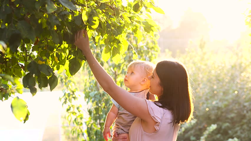 Happy young mother playing with her little baby son on sunshine warm autumn or summer day. Beautiful sunset light in the apple garden or in the park. Happy family concept 4k