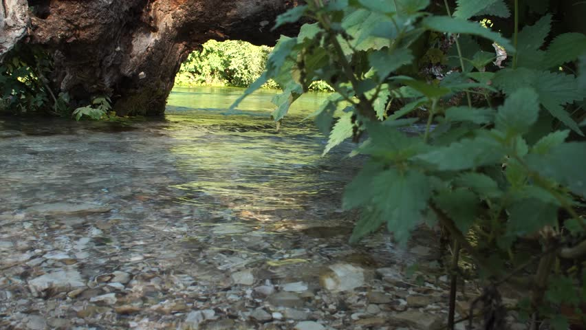 Beautiful river in Albania among forests and greenery | Shutterstock HD Video #19474414