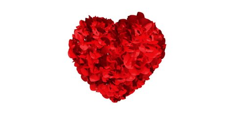 Heart of Rose Petals exploding
