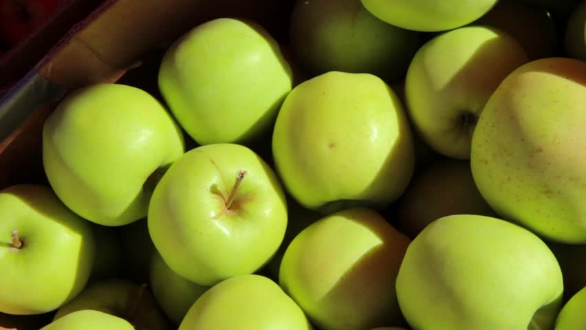 iol apples asian supplier - 852×480
