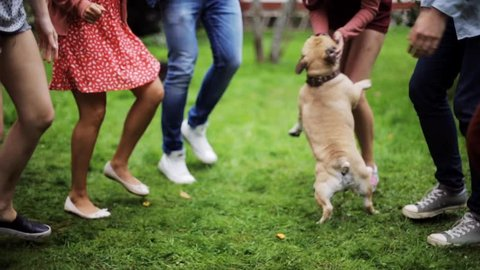 leisure, holidays, fun and people concept - happy friends dancing with french bulldog dog at summer party in garden