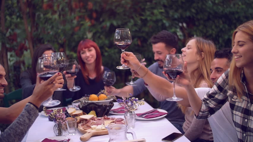 Group of friends enjoying together at a dinner party  | Shutterstock HD Video #20268964