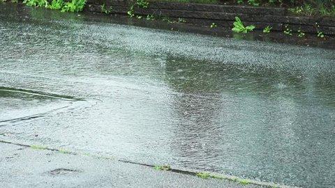Rain hits the asfalt street
