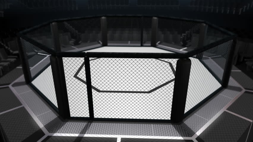 Treinamento -//- UFC Semidivino (Especial Noah e Seel) 1