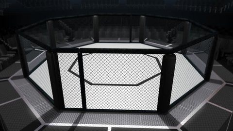 Octagon Fighting Arena: A seamless looping animation of a UFC style mixed martial arts fighting cage. Camera spins around, above and below the ring.