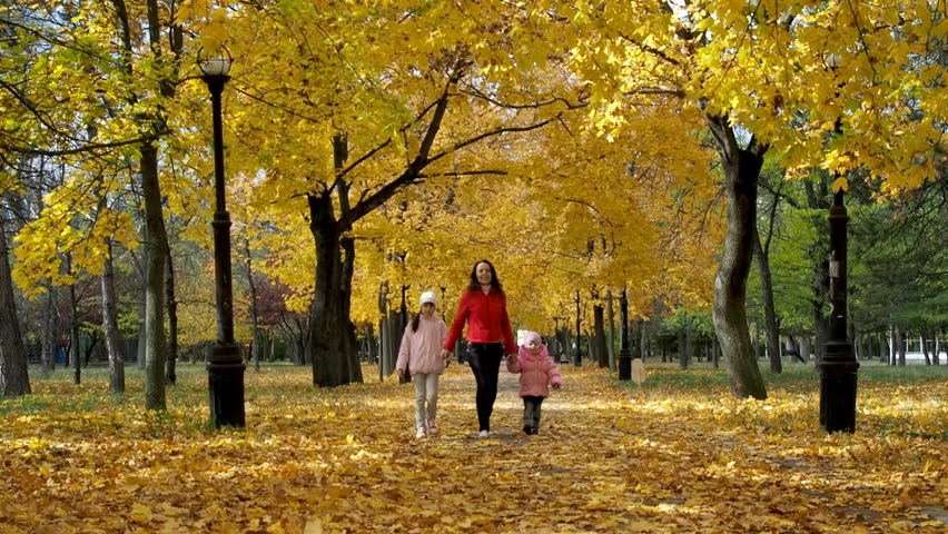A happy family is walking in the autumn park. A woman with children walks in the park on yellow leaves. | Shutterstock HD Video #21079096