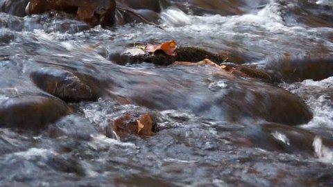 Mountain Stream XXI
