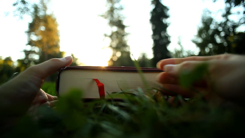 Young woman at the park opening a hardcover and book browsing through, hands close up | Shutterstock HD Video #21157354