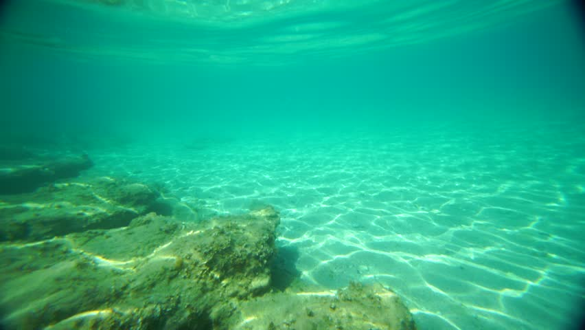 Sand And Rocks Underwater Stock Footage Video 11607260 ... Underwater Fish Tumblr