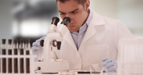 Millennial Hispanic medical scientist in laboratory looking through microscope. Latino research technician using tablet computer. 4k