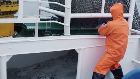 Fisherman Opens Trawl Net with Caugth Fish on Board of Commercial Fishing Ship. Shot on RED Cinema Camera in 4K (UHD).