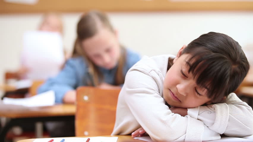 Cute pupil sleeping in the classroom