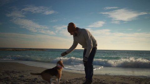 A young man training a dog and feeding it on the beach slow motion