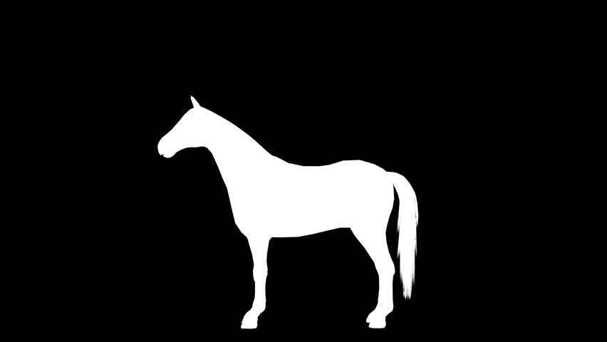 Galloping horse. Alpha channel. 4K.