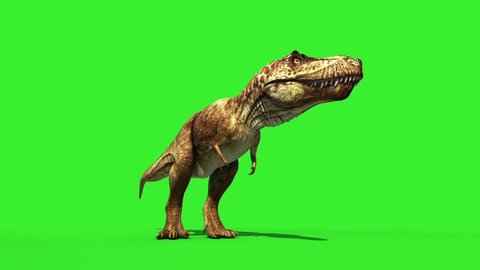 T Rex Tyrannosaur Feathered Roar Down Loop Jurassic World Dinosaurs Green Screen