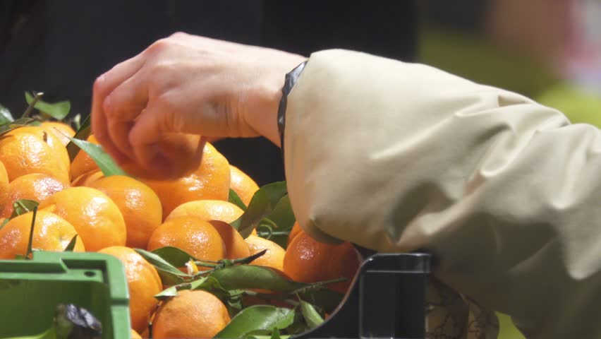 Female hand picks tangerines in a supermarket. Woman takes fruits from a box in a supermarket