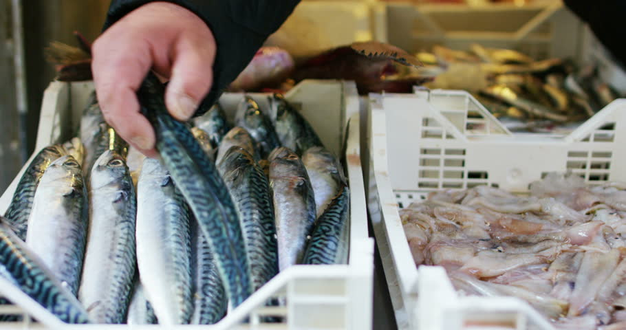 a fishmonger showing the fresh fish at the fish market. The fishmonger shows fresh fish to ensure the quality and goodness of its product. Concept: Diet,Mediterranean cuisine,fish market,healthy foods