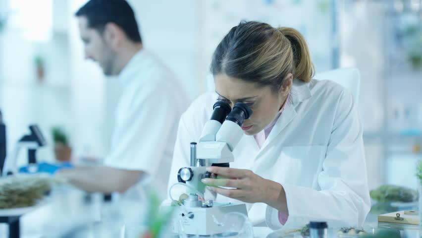 4K Scientific researchers in laboratory, woman analyzing sample under microscope Dec 2016-UK