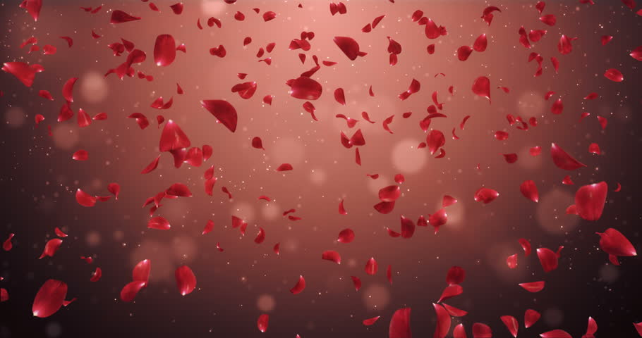 Animation of romantic flying dark red rose flower petals backdrop for st valentines day mothers day wedding anniversary greeting cards wedding invitation or birthday e card seamless loop 4k stock footage video stopboris Gallery