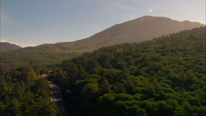 hill covered in trees to reveal road leading towards mount vesuvius