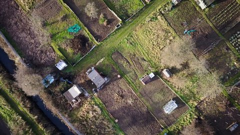 English allotments. 4K aerial drone video footage of green fallow winter allotments used for small-scale domestic vegetables growing. The drone moves forward revealing a larger network of allotments.