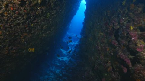 scuba divers exploring cave diving and tunnels underwater