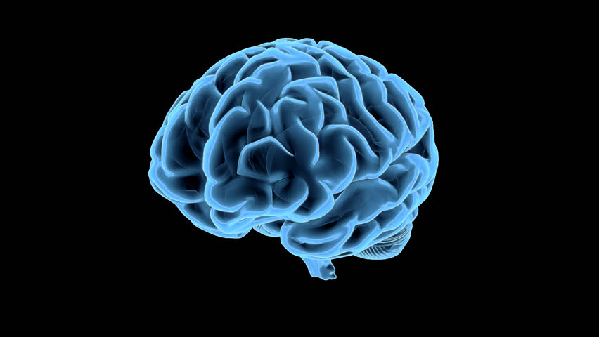 Blue brain rotation animation loop stock footage video - Brain wallpaper 3d ...
