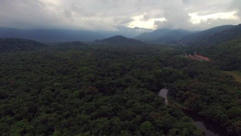 Aerial View of Rainforest, Latin America