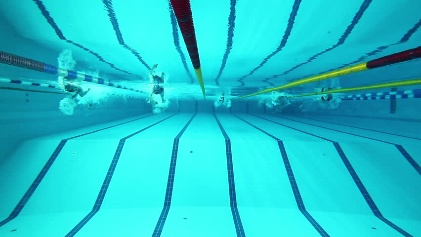 Swimming pool and swimmer during the training | Shutterstock HD Video #2478371
