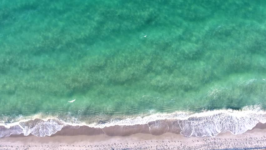 Video loop with aerial footage showing bird eye view of turquoise ocean waves breaking against tropical florida sand beach  | Shutterstock HD Video #24890444